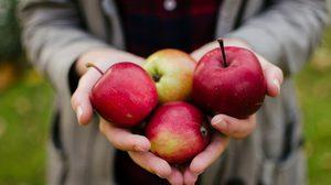 """ความแตกต่างของ """"แอปเปิ้ล"""" แต่ละสี"""