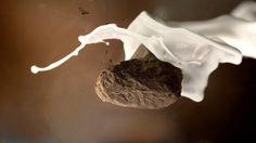 ท้าพิสูจน์ เนสกาแฟ เบลนด์ แอนด์ บรู หอมเหมือนกาแฟสด อร่อย จนใครๆ ก็เทใจให้