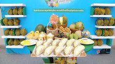 """บุฟเฟ่ต์ทุเรียนกลางกรุง """"The Original Thailand's Amazing Durian and Fruit Fest 2019"""""""