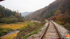 ปั่นจักรยานรถไฟ Railbike คังชอน ชมใบไม้เปลี่ยนสี