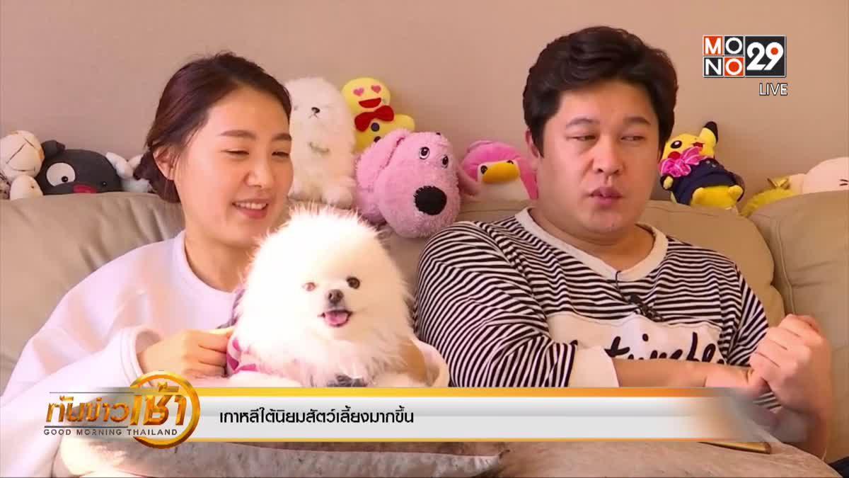 เกาหลีใต้นิยมสัตว์เลี้ยงมากขึ้น