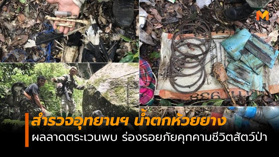 สำรวจ อุทยานฯน้ำตกห้วยยาง พบร่องรอย ภัยคุกคามชีวิตสัตว์ป่า