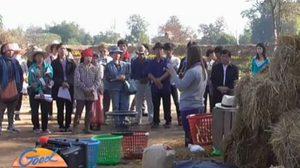 วิกฤตภัยแล้ง! เกษตรกรหัน 'เพาะเห็ดฟางคอนโด' สร้างรายได้เสริม