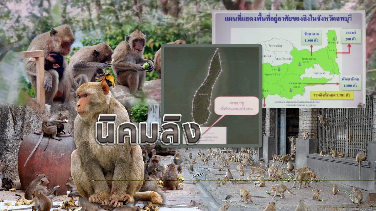 นิคมลิง 17-05-61