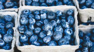 29 สุดยอดอาหาร ที่จะทำให้เรารู้สึกสดใส ผิวพรรณผุดผ่อง ดวงตาเป็นประกาย