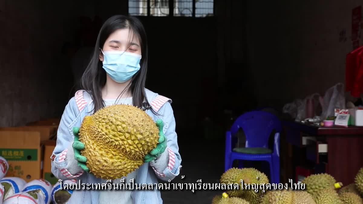 'ทางหลวงคุนหมิง-กรุงเทพฯ' ผลักดันการค้าดอกไม้ผลไม้ 'จีน-ไทย'