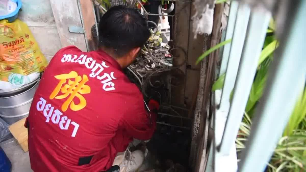 หวิดดับ !! กู้ภัยช่วยตัวเงินตัวทอง ส่วนหัวติดกระถางต้นไม้