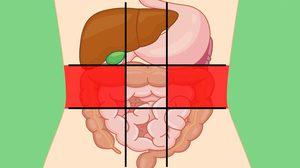 9 จุดตำแหน่ง ปวดท้อง บ่งบอกถึงโรคและปัญหาสุขภาพของคุณได้!!