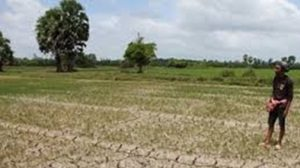 ส.ป.ก. เว้นค่าเช่าที่ดิน-เพิ่มวงเงินกู้ ให้เกษตรกรรับปีใหม่