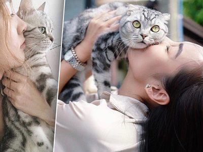 ทาสรู้ยัง !? แมว ไม่ชอบการเซลฟี่