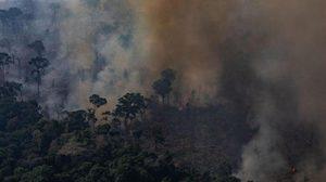 ไฟป่าอะเมซอนยังวิกฤต ส่งผลกระทบหนักต่อเนื่อง