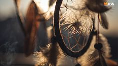 ทำนายฝัน ฝันเวลาไหนที่ควรนำมาตีความ เพราะสิงนั้นจะเกิดขึ้นจริง!