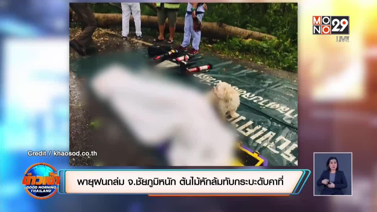 ภาพสุดเศร้า! สุนัขนั่งเฝ้าร่างไร้วิญญาณของเจ้านาย ไม่ห่าง แม้ตัวเองจะบาดเจ็บ