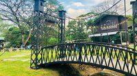 เสพความเขียว นั่งชิลล์มองทุ่งนา ณ ร้านสะพานโยง จ.ศ. ๑๒๗๙