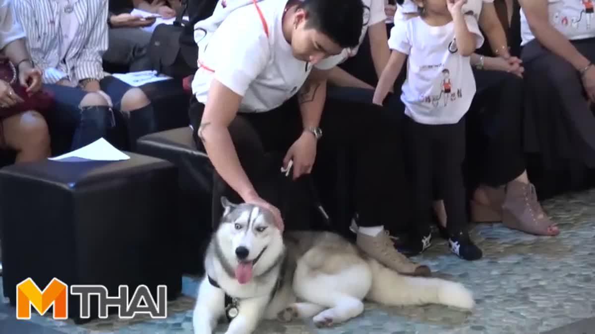 เอ็นดูไปอีก! โมเม้นต์น่ารัก โตโน่กับน้องหมา