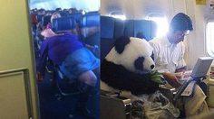 10 เรื่องฮากระจายบน เครื่องบิน ที่จะทำให้คุณอมยิ้มตามไปด้วย
