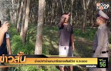 ช้างป่าทำร้ายคนกรีดยางเสียชีวิต จ.ระยอง