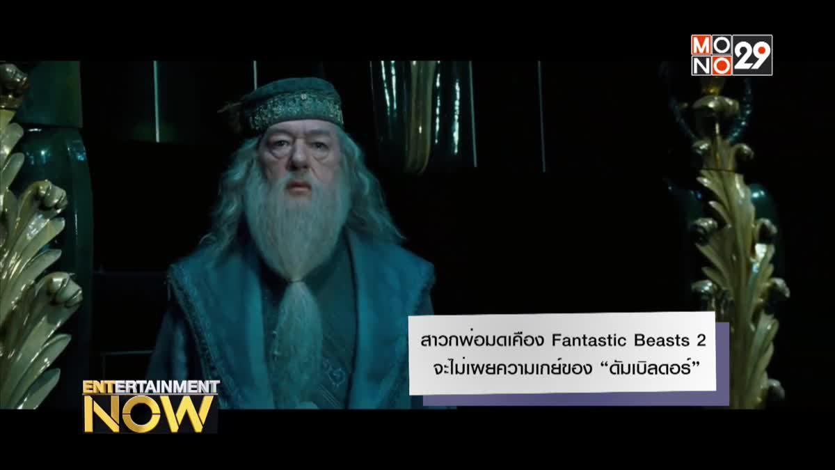 """สาวกพ่อมดเคือง Fantastic Beasts 2 จะไม่เผยความเกย์ของ """"ดัมเบิลดอร์"""""""