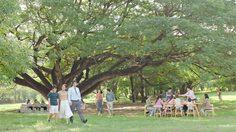 ร่วมกัน สร้างสังคมน่าอยู่ กับ THE FORESTIAS เมืองแห่งความสุขที่ยั่งยืน