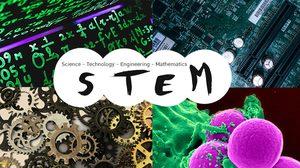 STEM คืออะไร