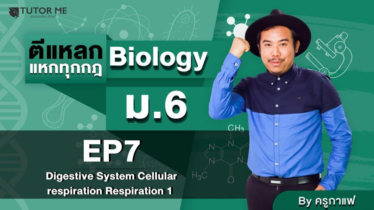 EP 7 Digestive System Cellular respiration Respiration 1