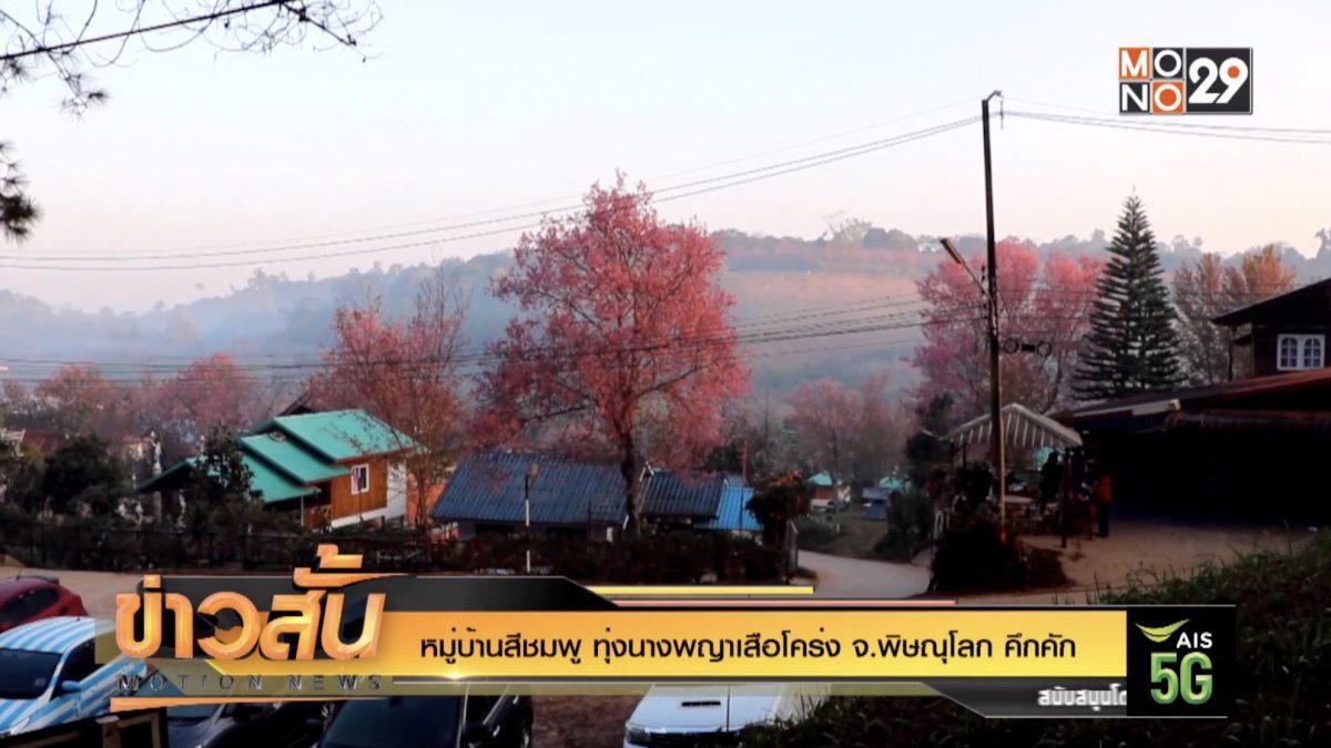 หมู่บ้านสีชมพู ทุ่งนางพญาเสือโคร่ง จ.พิษณุโลก คึกคัก