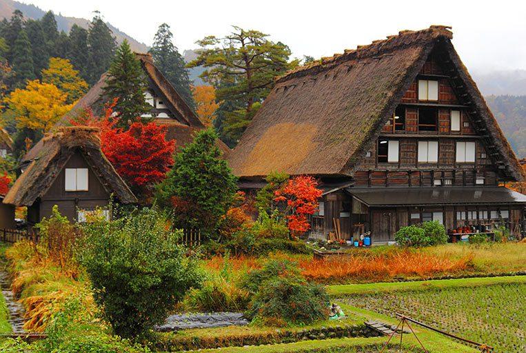 หมู่บ้านหลังคาโบราณชิราคาวะโกะ (shirakawago ) สถานที่ ชมใบไม้เปลี่ยนสีที่ญี่ปุ่น