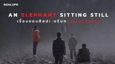 An Elephant Sitting Still : เรื่องของศิลปะ บริบท และความตาย