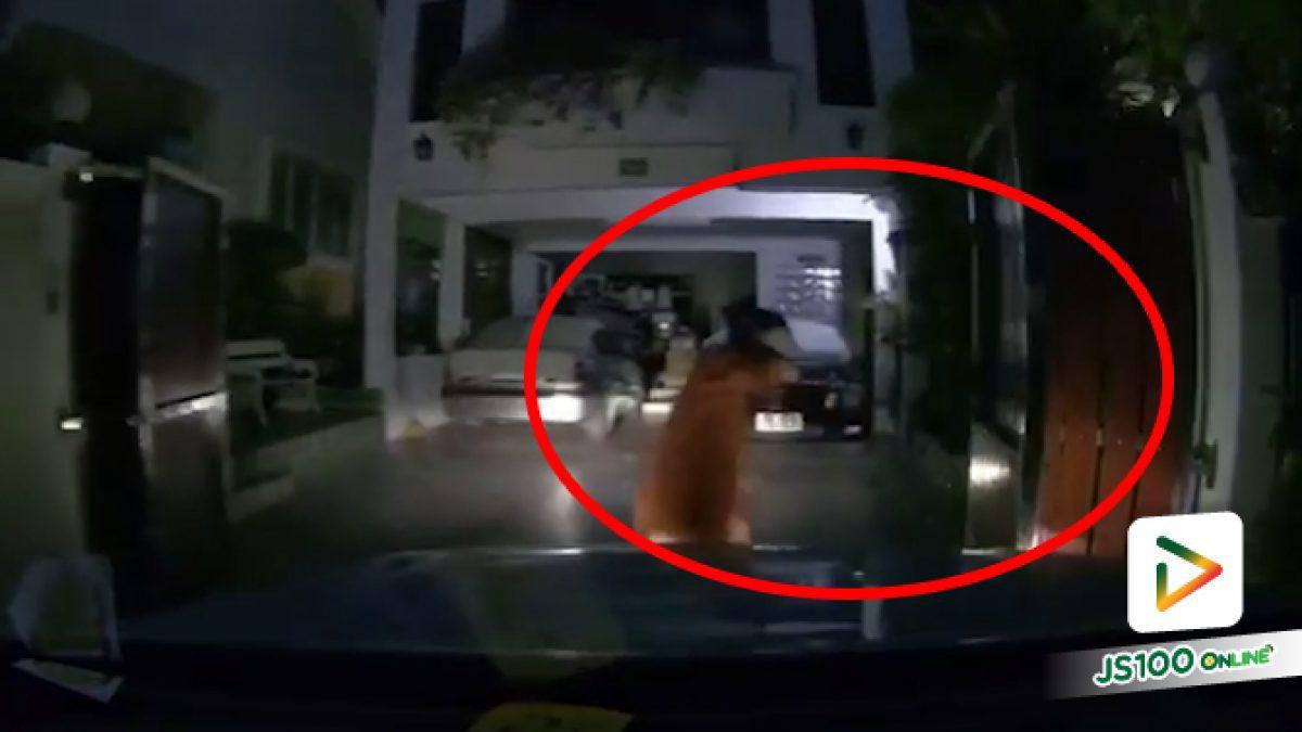 อุทาหรณ์ใช้ระบบ auto stop เอี้ยวจับลูกเท้าแตะคันเร่ง ก่อนตกใจเหยียบคันเร่งซ้ำชนรั้ว ภรรยารอดหวุดหวิด