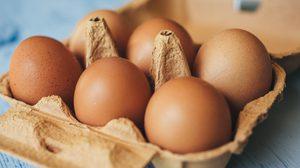 วิธีฟรีซไข่ไก่ ให้เก็บได้เป็นปี ยืดอายุไข่ไก่ให้เก็บได้นาน