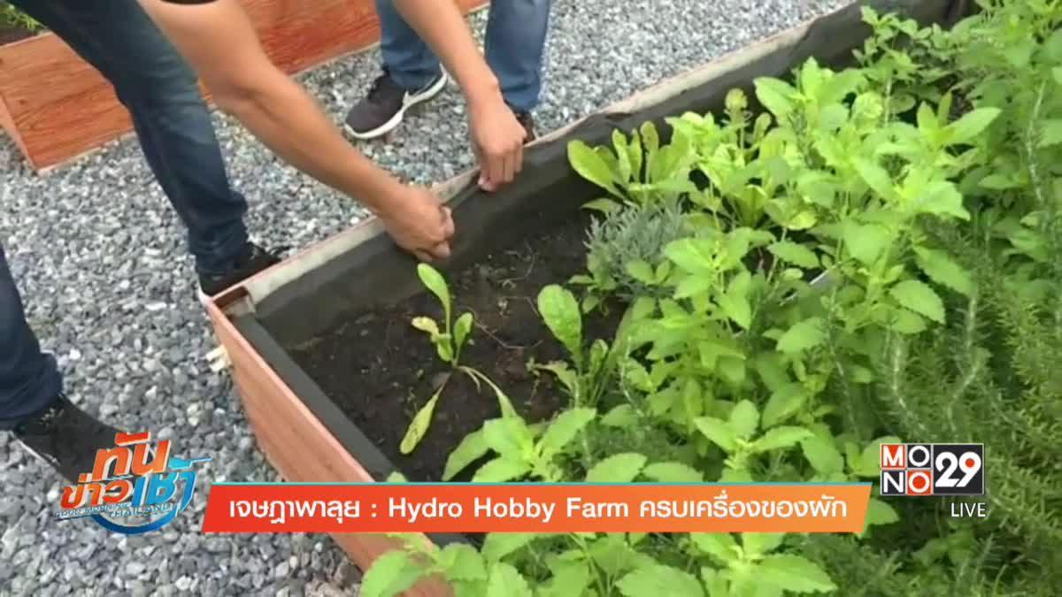 เจษฎาพาลุย : ฟาร์มผักไฮโดรโปรนิค
