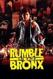 Rumble In The Bronx ใหญ่ฟัดโลก