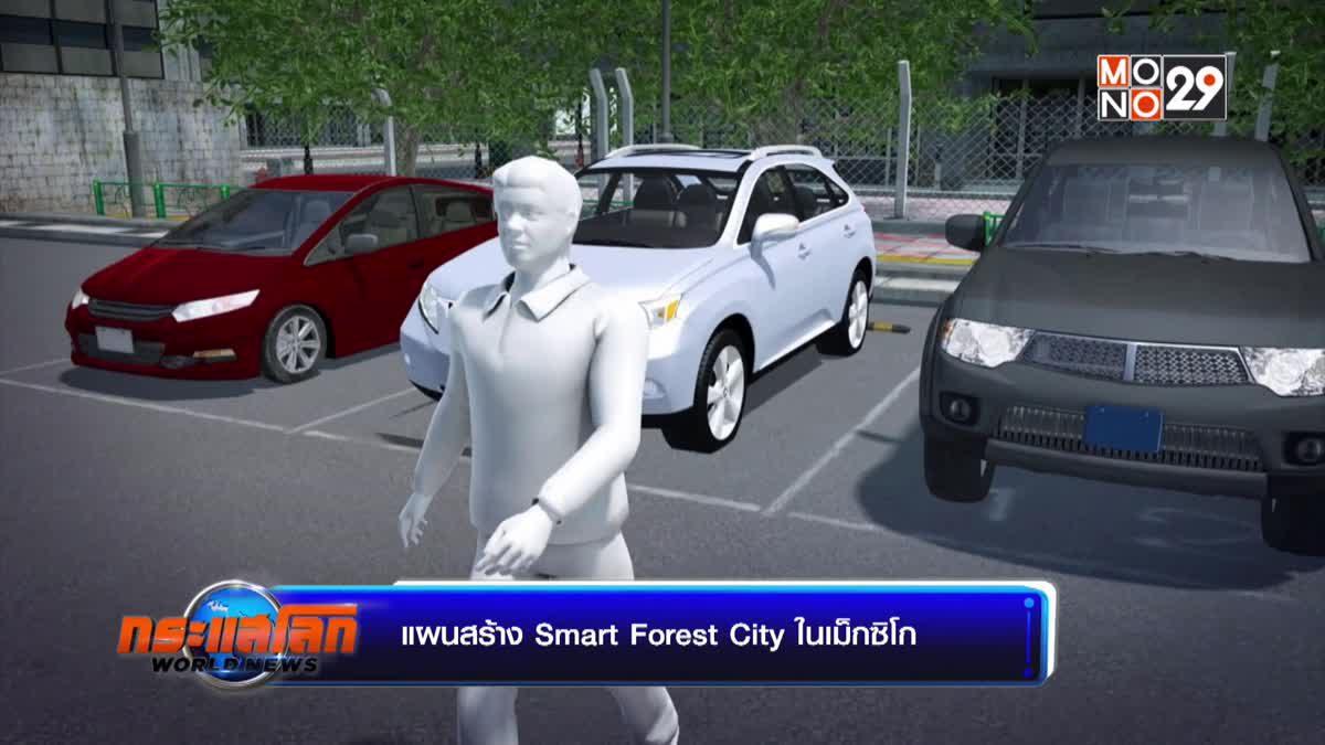 แผนสร้าง Smart Forest City ในเม็กซิโก