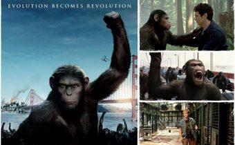 เปิดปมไตรภาคลิง Planet of the Apes กับสิ่งที่ผู้ชมจะได้เห็น!
