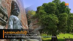 10 อันดับสุดยอด ต้นไม้มหัศจรรย์และทรงคุณค่าของไทย ที่หลายคนยังไม่รู้