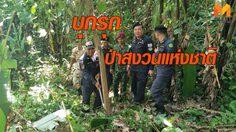 รื้อถอน! ทำลายต้นยางพารา บุกรุกป่าสงวนแห่งชาติ กว่า 29 ไร่