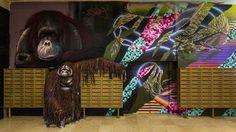 ศิลปะ Graffiti ในโรงเรียนเก่า จากศิลปินกว่าร้อยคน เปิดโชว์เวลาจำกัดก่อนโดนลบ