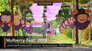 Mulberry Fest' 2019 เทศกาลเก็บมัลเบอร์รี่ ชมสวน ชิมของอร่อย ที่ไร่กำนันจุล