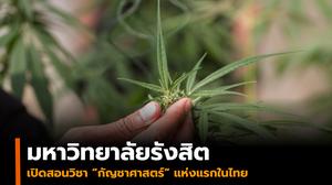 มหาวิทยาลัยรังสิต เปิดสอนวิชา 'กัญชาศาสตร์' แห่งแรกในไทย