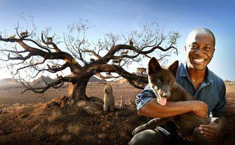 Dogs: An Amazing Animal Family สำรวจถิ่นเจ้าเพื่อนยาก