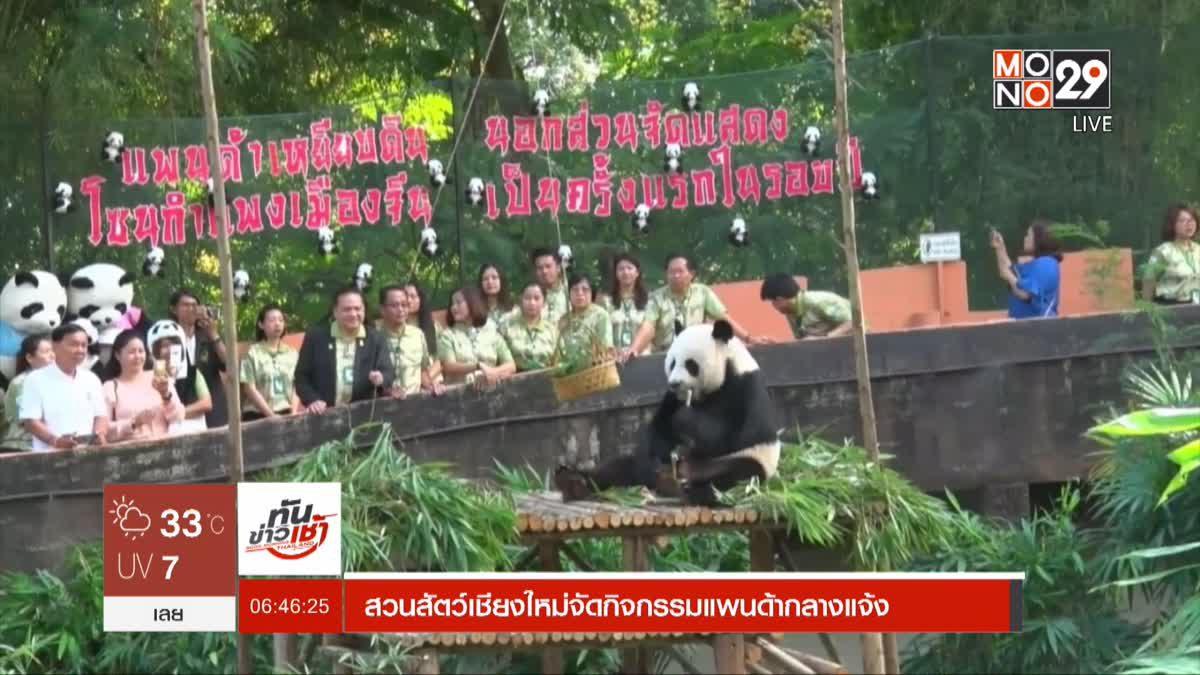 สวนสัตว์เชียงใหม่จัดกิจกรรมแพนด้ากลางแจ้ง