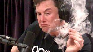 อีลอน มัสก์ สูบกัญชาโชว์ระหว่างถ่ายทอดสด ทำหุ้นตกลง 6เปอร์เซ็นในวันเดียว