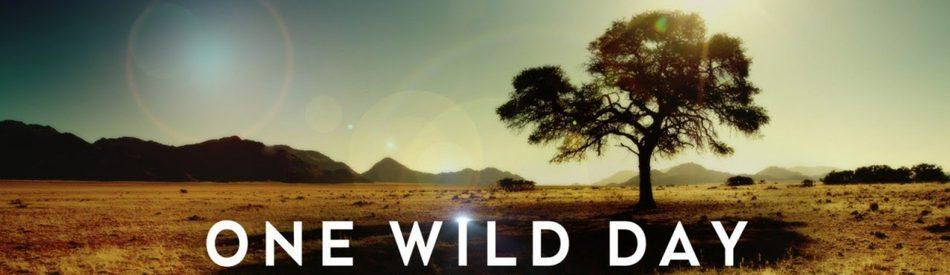 One Wild Day ชีวิตต้องรอด