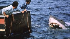 Top 6 ฉลามไซส์บิ๊กโคตรโหด ในโลกภาพยนตร์! เหล่า 'น้อง' นักล่าแห่งท้องทะเล