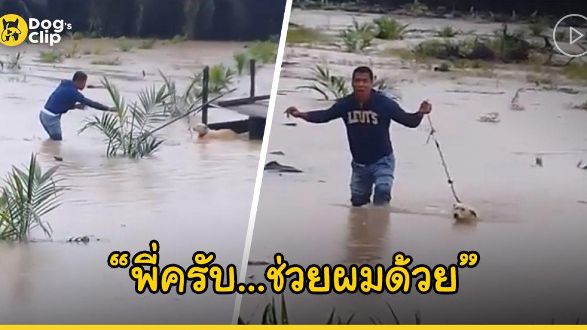 ฮีโร่หนุ่มลุยน้ำเข้าช่วยชีวิตน้องหมาที่ถูกล่ามโซ่ทิ้งไว้ท่ามกลางสวนปาล์มที่ถูกน้ำท่วม