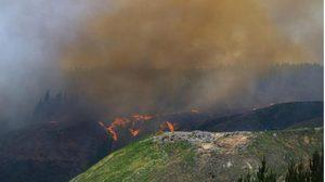ออสซี่ทุ่มเงินเพิ่ม 58 ล้านดอลลาร์ บรรเทาทุกข์-ช่วยเหยื่อไฟป่าสร้างชีวิตใหม่