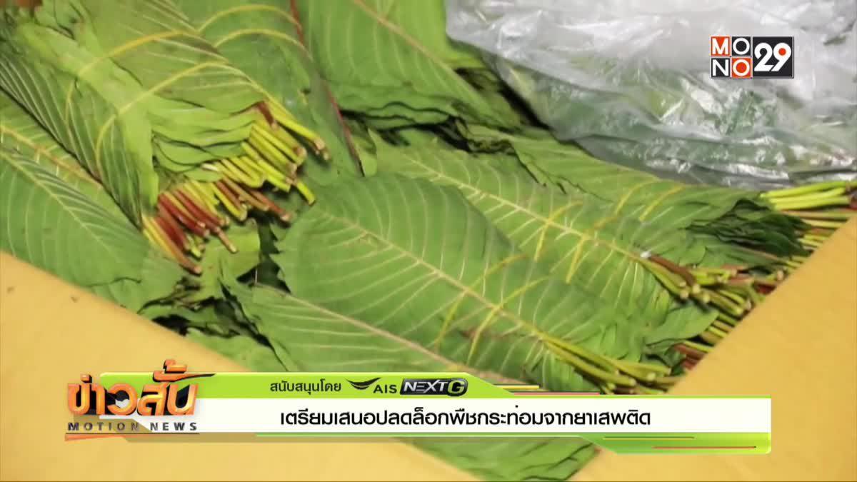 เตรียมเสนอปลดล็อกพืชกระท่อมจากยาเสพติด