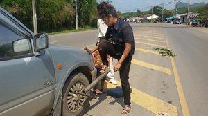 ชื่นชม! ช่างซ่อมรถยนต์สาว ฝีมือเยี่ยมเก่งไม่แพ้ผู้ชาย