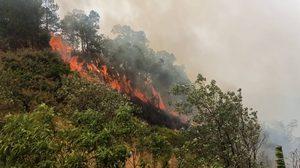 พบจุด hot spot จากสถานการณ์ไฟป่าและหมอกควันภาคเหนือ 503 จุด
