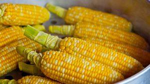 ข้าวโพด เป็นผักหรือผลไม้ - วิธีการจำแนกผักและผลไม้